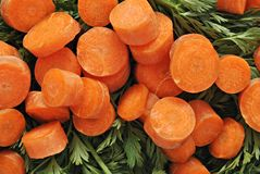 κεφάλαιο καρότων Στοκ Εικόνα