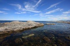 κεφάλι αγελάδων ακτών Στοκ φωτογραφία με δικαίωμα ελεύθερης χρήσης