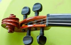 Κεφάλι βιολιών στο πράσινο υπόβαθρο στοκ εικόνα