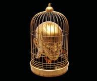 Κεφάλι στο κλουβί Στοκ Φωτογραφίες