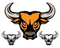 Κεφάλι του Bull Στοκ Εικόνα