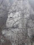 Κεφάλι Decebal Στοκ Φωτογραφίες