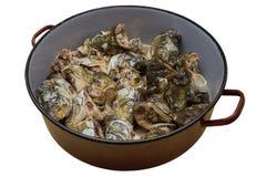 Κεφάλια κυπρίνων στην κατσαρόλλα για την κατασκευή των ψαριών την επικεφαλής σούπα Στοκ Εικόνες