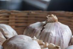 Κεφάλια σκόρδου σε ένα καλάθι Στοκ Εικόνες