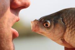Κεφάλι ανθρώπων και ψαριών Στοκ φωτογραφίες με δικαίωμα ελεύθερης χρήσης