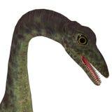 Κεφάλι δεινοσαύρων Anchisaurus διανυσματική απεικόνιση