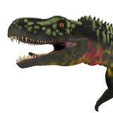 Κεφάλι δεινοσαύρων Arizonasaurus απεικόνιση αποθεμάτων