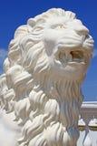 Κεφάλι λιονταριού Στοκ εικόνες με δικαίωμα ελεύθερης χρήσης