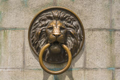 Κεφάλι λιονταριών «s με ένα δαχτυλίδι Στοκ Εικόνες