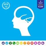 Κεφάλι με το εικονίδιο συμβόλων εγκεφάλου Στοκ εικόνα με δικαίωμα ελεύθερης χρήσης