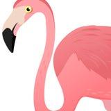 Κεφάλι φλαμίγκο επίσης corel σύρετε το διάνυσμα απεικόνισης Αφίσα με το λογότυπο φλαμίγκο Χαριτωμένο τροπικό εξωτικό πουλί η ανασ Στοκ εικόνες με δικαίωμα ελεύθερης χρήσης