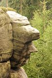 Κεφάλι ψαμμίτη Στοκ εικόνες με δικαίωμα ελεύθερης χρήσης
