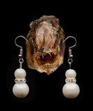 Κεφάλι ψαριών με τα σκουλαρίκια Στοκ εικόνα με δικαίωμα ελεύθερης χρήσης