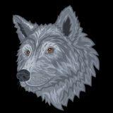 Κεφάλι λύκων σε ένα μαύρο υπόβαθρο επίσης corel σύρετε το διάνυσμα απεικόνισης Στοκ Εικόνα