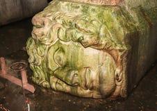 Κεφάλι Meduse Στοκ Εικόνες