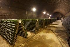 Κελάρι κρασιού για τη βιομηχανική παραγωγή Στοκ εικόνα με δικαίωμα ελεύθερης χρήσης