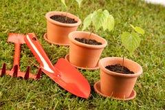 κηπουρική έννοιας Στοκ εικόνες με δικαίωμα ελεύθερης χρήσης