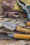 κηπουρική εξοπλισμού Στοκ Εικόνα