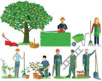 Κηπουρική Εργαλεία κήπων, κήπος ελεύθερη απεικόνιση δικαιώματος