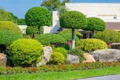 Κηπουρική και εξωραϊσμός Στοκ φωτογραφίες με δικαίωμα ελεύθερης χρήσης