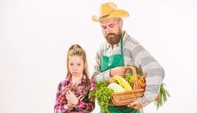 Κηπουρική και συγκομιδή Οργανικά λαχανικά οικογενειακών αγροκτημάτων Γενειοφόρος αγροτικός αγρότης ατόμων με το παιδί Οικογένεια  στοκ φωτογραφίες
