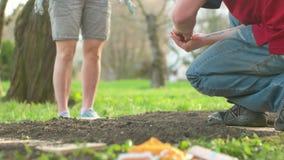 Κηπουρική στο κατώφλι Βουλών απόθεμα βίντεο