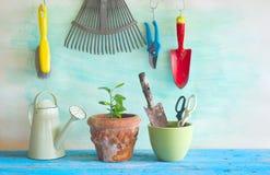 Κηπουρική στο sprind Στοκ Φωτογραφία