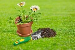 Κηπουρική Στοκ εικόνες με δικαίωμα ελεύθερης χρήσης