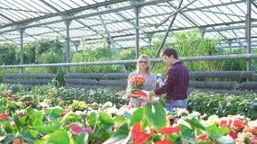 Κηπουροί που ψεκάζουν flowerpots στο gardenhouse 4K απόθεμα βίντεο