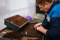 Κηπουροί στην εργασία Στοκ φωτογραφίες με δικαίωμα ελεύθερης χρήσης