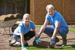 Κηπουροί τοπίων που βάζουν την τύρφη για το νέο χορτοτάπητα Στοκ Εικόνες