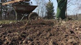 Κηπουρός γυναικών που χρησιμοποιεί την τσουγκράνα στον τομέα απόθεμα βίντεο