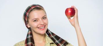 Τέλεια μήλα Διατροφή μήλων έναρξης Η γυναίκα φέρνει το καλάθι με τα φυσικά φρούτα Κηπουρός κοριτσιών συγκομιδών μήλων κηπουρών τη στοκ φωτογραφία με δικαίωμα ελεύθερης χρήσης