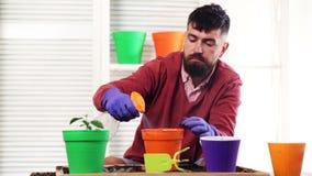Κηπουρός Κτηνοτρόφος ή βιολόγος με το χώμα και το μικροσκόπιο Καλοκαίρι, εργασία SU Στα λουλούδια εγκαταστάσεων Νέες ποικιλίες εγ απόθεμα βίντεο