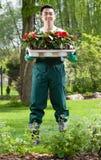 Κηπουρός με τα σπορόφυτα λουλουδιών Στοκ Εικόνα