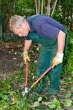 Κηπουρός με τον κόπτη Στοκ εικόνες με δικαίωμα ελεύθερης χρήσης