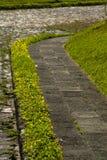 Κηπουρός οδών πεζοδρομίων στη Γουατεμάλα, cetral Αμερική στοκ φωτογραφία με δικαίωμα ελεύθερης χρήσης