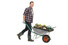 Κηπουρός που ωθεί wheelbarrow με τα λουλούδια Στοκ φωτογραφία με δικαίωμα ελεύθερης χρήσης