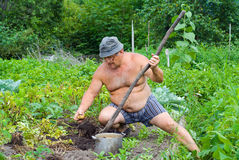 κηπουρός 10 Στοκ Εικόνα