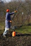 κηπουρός Στοκ εικόνα με δικαίωμα ελεύθερης χρήσης