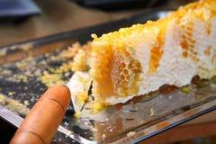 Κηρήθρα, μέλι Προϊόντα της μελισσοκομίας Στοκ εικόνα με δικαίωμα ελεύθερης χρήσης