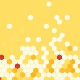 Κηρήθρα με το κίτρινο υπόβαθρο μελιού διάνυσμα Στοκ φωτογραφίες με δικαίωμα ελεύθερης χρήσης