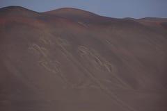 Κηροπήγια Paracas Στοκ εικόνα με δικαίωμα ελεύθερης χρήσης
