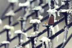 κηροπήγιο παλαιό Στοκ φωτογραφία με δικαίωμα ελεύθερης χρήσης