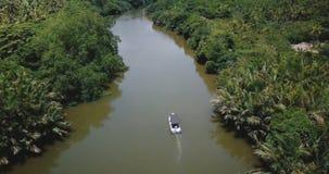 Κηφήνας που, κλίση κάτω στη μικρή άσπρη βάρκα που πλέει κατά μήκος του όμορφου ποταμού ζουγκλών στην αγριότητα με τις αντανακλάσε απόθεμα βίντεο