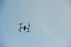 Κηφήνας που πετά από πάνω Στοκ φωτογραφία με δικαίωμα ελεύθερης χρήσης