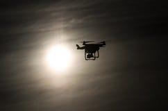 Κηφήνας που πετά στον ήλιο Στοκ Εικόνες