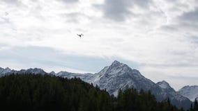 Κηφήνας στον ουρανό - βουνά στο υπόβαθρο απόθεμα βίντεο