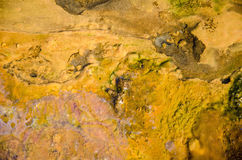 Κηλίδα πετρελαίου ουράνιων τόξων Στοκ φωτογραφία με δικαίωμα ελεύθερης χρήσης