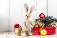 Κιβώτια κουνελιών και δώρων παιχνιδιών Στοκ Εικόνες
